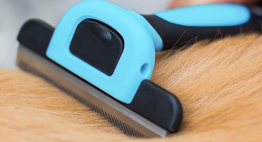 Cepillo economico y barato para mascotas, Cepillo VersionTech