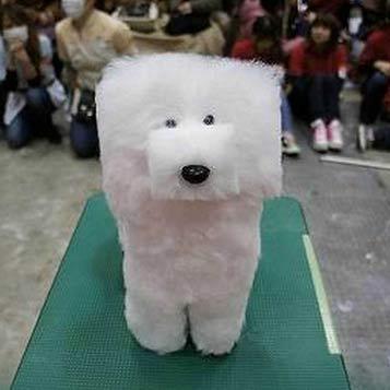 Lo que pasa si no llevas a tu perro a la peluqueria para perros