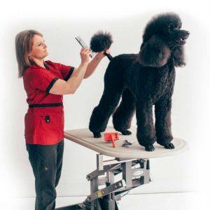 peinado y cepillado de perros profesional